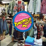 timomocy2.jpg